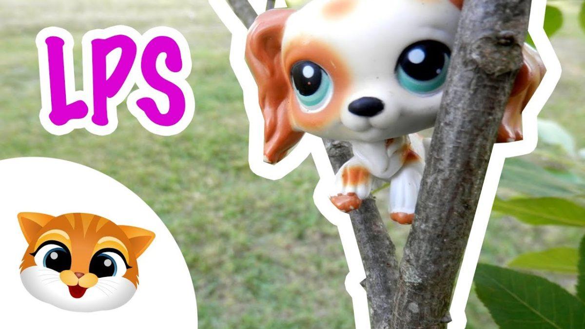 Pet Shop Week #23 - LPS zabawa w chowanego, zabawki dla dzieci
